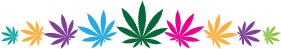Colored cannabis leaves graphic