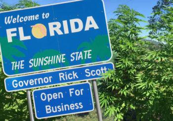 Florida Pushed Past Missouri with Hemp Bill