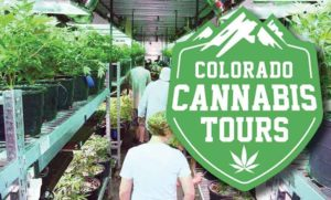 Free Colorado Cannabis Tours Trip Giveaway